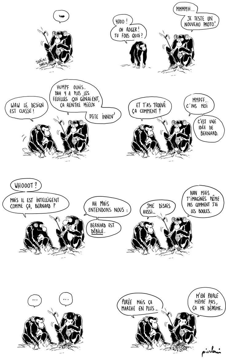 pour la petite anecdote, les chimpanzés c'est en deux strips :)