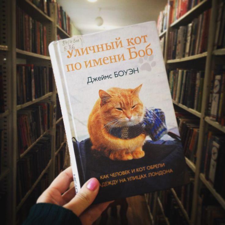 Читайте отзыв на книгу Джеймса Боуэна «Уличный кот по имени Боб» в нашей группе ВКонтакте