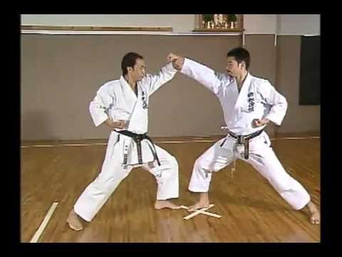 karate the complete kata pdf