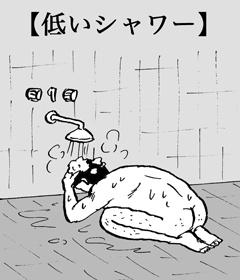 低いシャワー