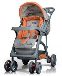 Just ordered a Baby Pram online at Firstcry.com. The variety present there is awesome. Alongwith the reasonable prices I have also got Free shipping.
