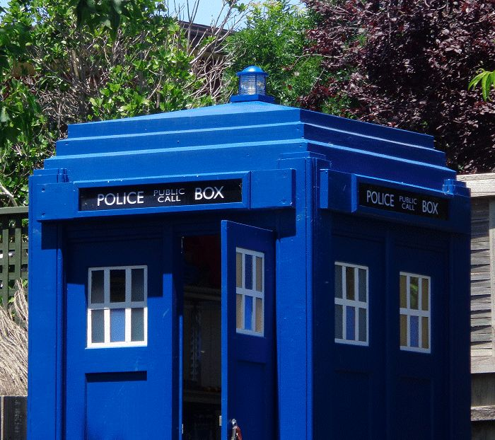 TARDIS and roof lamp