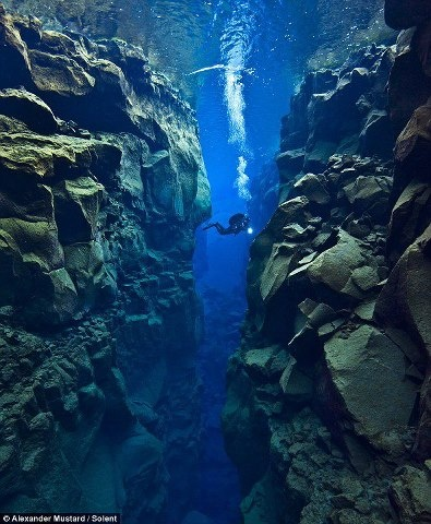 Marine biologist and underwater photographer Alexander Mustard explores an underwater canyon off the coast of Iceland where the North American and Eurasian tectonic plates meet.    The area is full of faults, valleys, volcanoes and hot springs, formed by the two tectonic plates slowly drifting apart, deep below the surface.     Photograph by Alexander Mustard: http://www.amustard.com/