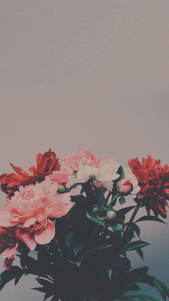 Flores fundo papel de parede