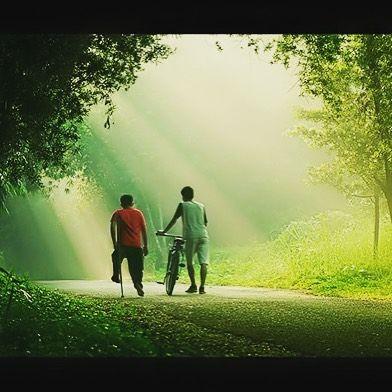 Işığın yansıması& dostluk #ışık #bisiklet #yeşil #yansıma #dostluk