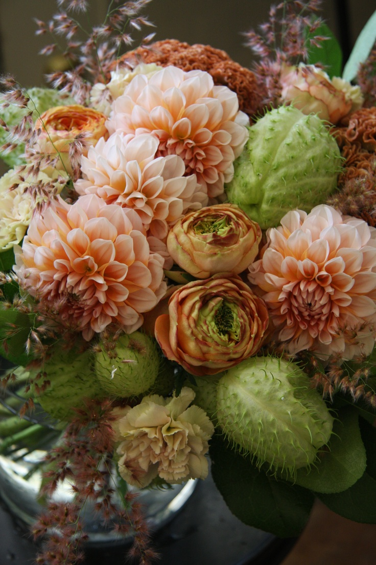 autumn bouquet with dahlia,rose,celosia and gomphocarpus