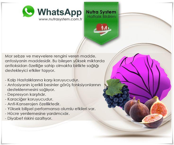 HER PAZARTESİ... Haftalık WhatsApp Bildirimlerimizle Sizlerleyiz.   WhatsApp üyeliği İçin info@nutrasystem.com.tr adresine Ad Soyad ve e-mail bilgilerinizi gönderebilir...Uzmanlarımızdan güncel bilgilere ulaşabilirsiniz.   HABER DETAY İÇERİĞİ http://www.nutrasystem.com.tr/antioksidan-kaynagi-mor-besinler/