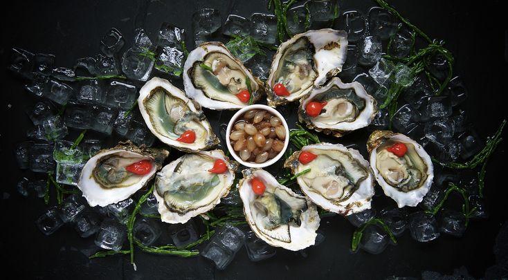 #Austern gelten als eine der absoluten Delikatessen der Meere. Aber wann sollte man sie geniessen? Wir haben für euch alle Fakten rund um diese spezielle #Delikatesse. #Wissen