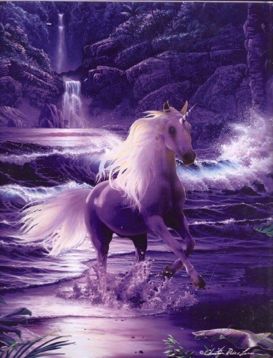 Unicorns - The Gallery - Unicorn Artwork - Pegasus Images - Unicorn Pictures