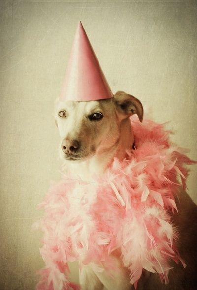 Inspiration For Dottie's Birthday