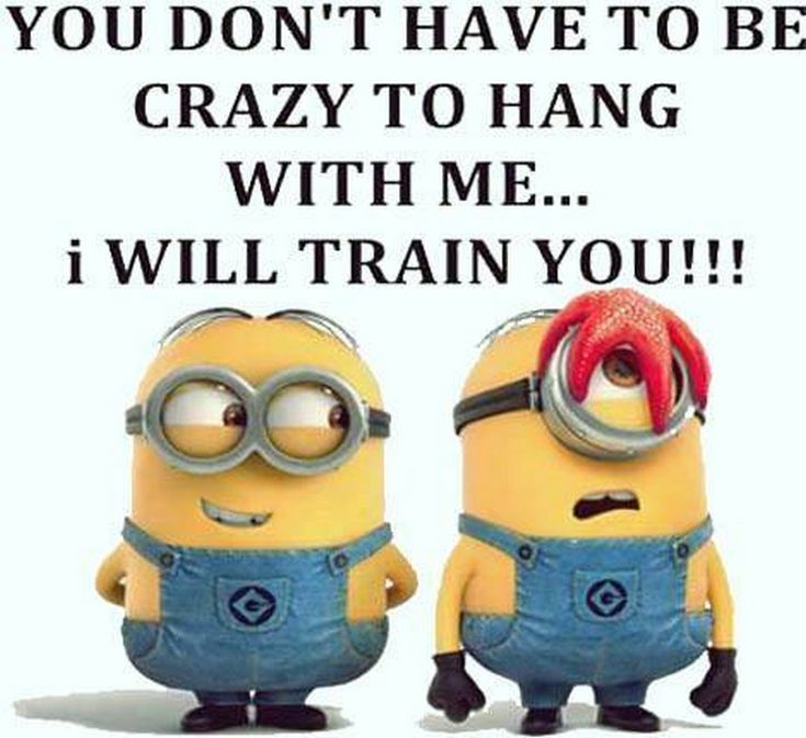 Minion Monday Quotes: Best 25+ Funny Monday Quotes Ideas On Pinterest