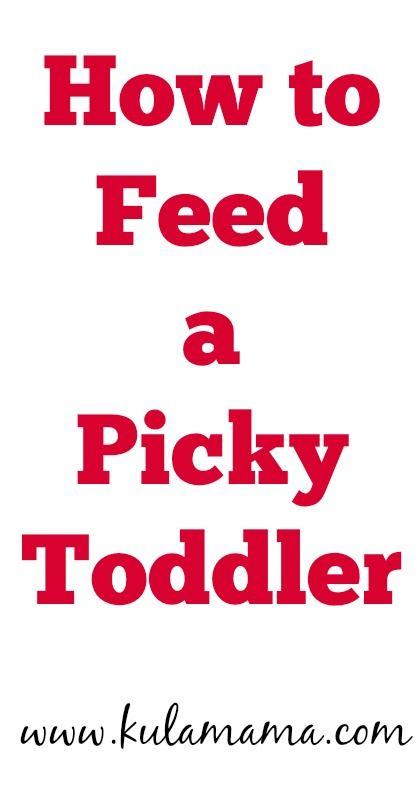 How to Feed a Picky Toddler by www.kulamama.com