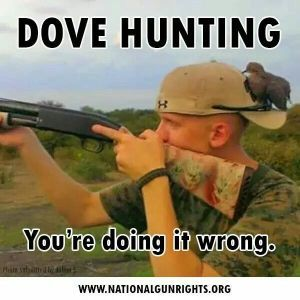 Image result for funny dove hunting pictures