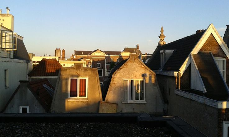 Amsterdam's roofs early in the morning.