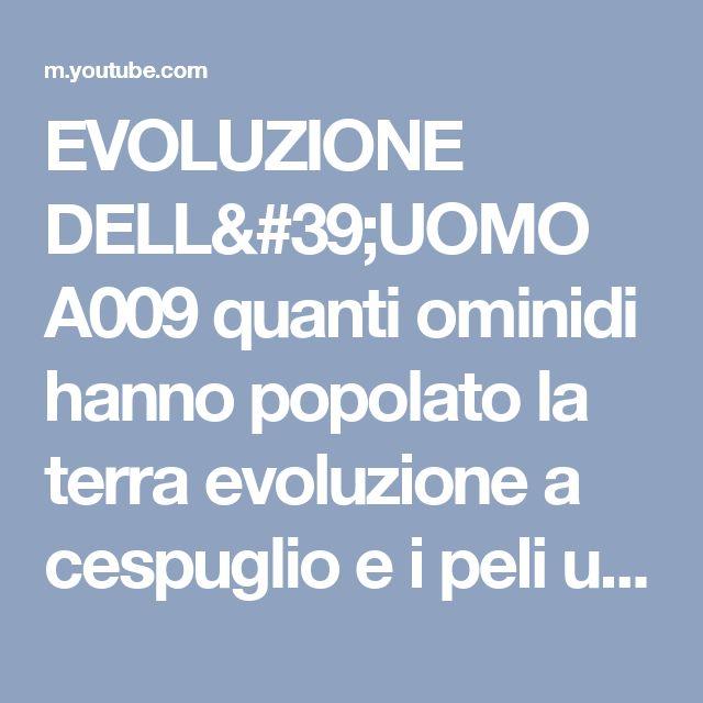 EVOLUZIONE DELL'UOMO A009 quanti ominidi hanno popolato la terra evoluzione a cespuglio e i peli una - YouTube