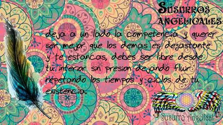 Mensaje del Arcángel Raziel.  #follow #angeles #luz #terapiasconangeles #mensajesangelicales #angelesdiaadia  #crecimientointerior #caminohaciaDios