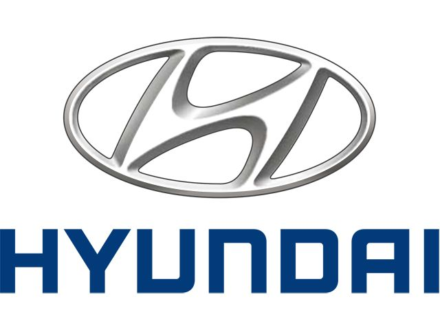 LTS Auto Hyundai Bull Bars