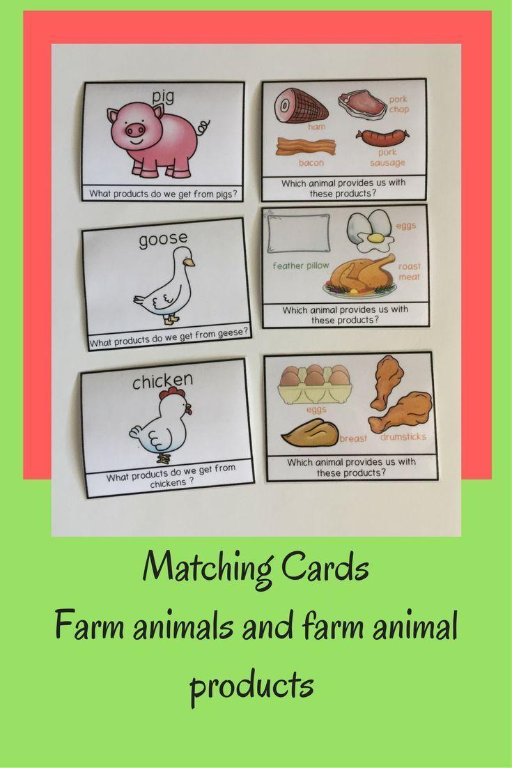 398 best farm animals images on Pinterest | Farm animals, Primary ...