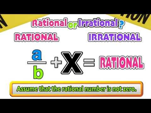 rational vs irrational numbers pdf