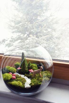 Moss fairy terrarium in goldfish bowl (cute in winter)