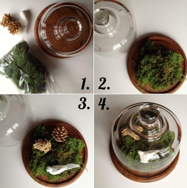 Easy Terrarium Displays: Plants Terrarium, Idea, Bedside Terrarium, Cake Stands, Diy Terrarium, Terrarium Landscape, Easy Terrarium, Mocking Terrarium, Cakes Stands