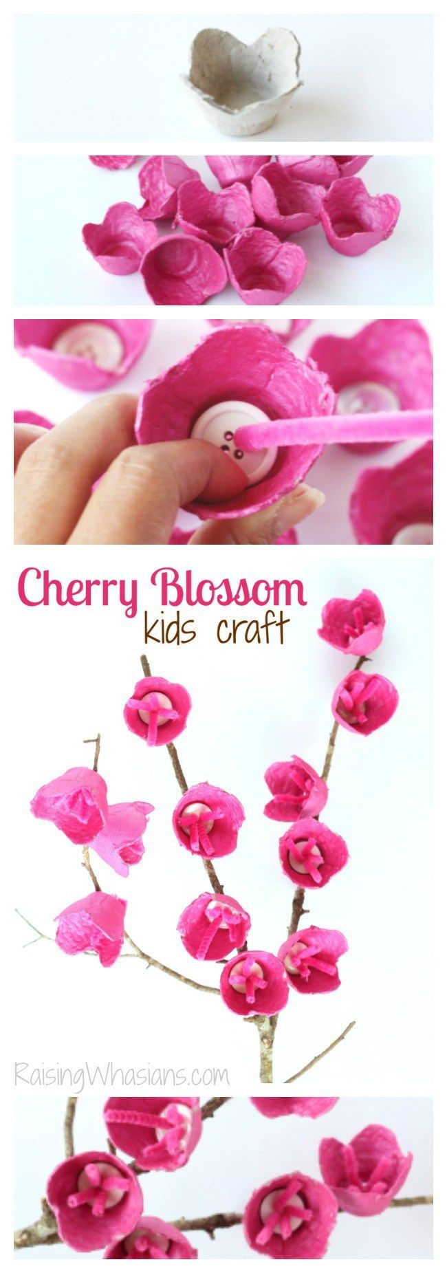 Cherry Blossom Craft for Kids | Upcycle old egg cartons into kids crafts! Easy spring craft idea