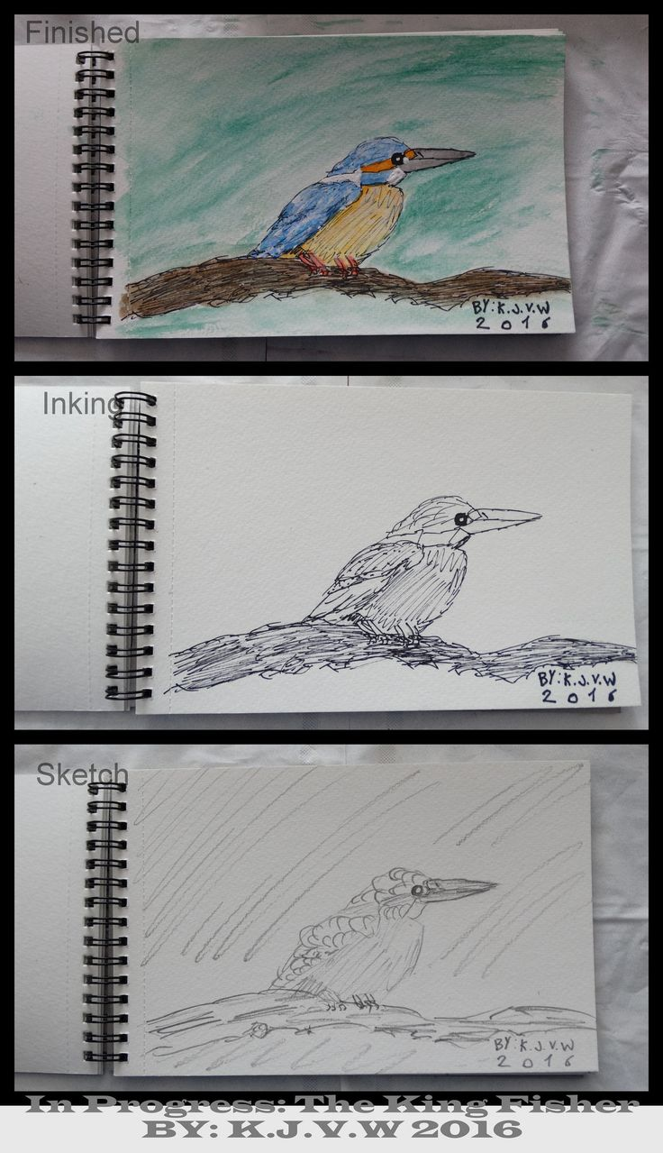https://flic.kr/p/FLFr6m | In Progress: 15 | The Kingfisher (From The Bottom)  1-Sketch  www.flickr.com/photos/116827835@N07/26683042916/in/datepo... 2-Inking www.flickr.com/photos/116827835@N07/26103530054/in/datepo... 3-Finished www.flickr.com/photos/116827835@N07/26683043486/in/datepo...