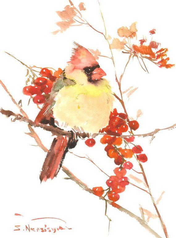 Female Cardinal Bird, Original watercolor bird painting, 12 X 9 in, cardinal bird lover art