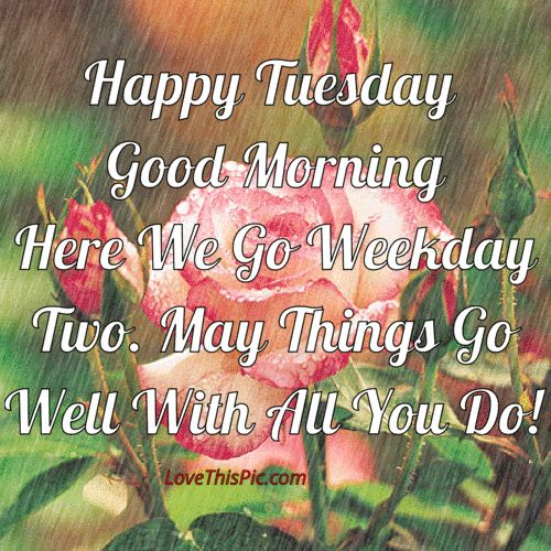 Happy Tuesday May Things Go Well With All You Do