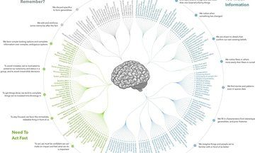 You Can't Always Trust Your Own Thoughts, And This Chart Shows Why