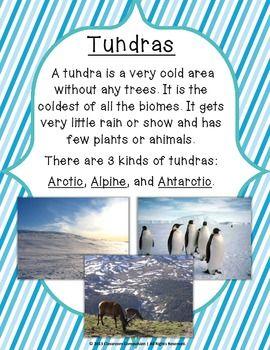 Tundra Biome Habitat Science Pack (Worksheets, Vocabulary ...