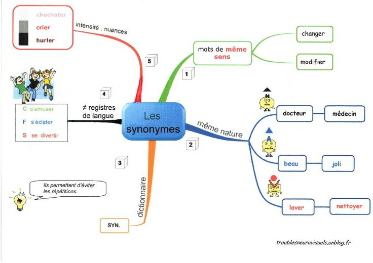 Les synonymes , carte mentale