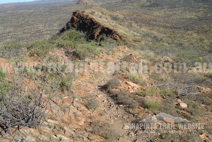Ridgetop walking along Section 1 Larapinta Trail. © Explorers Australia Pty Ltd 2013