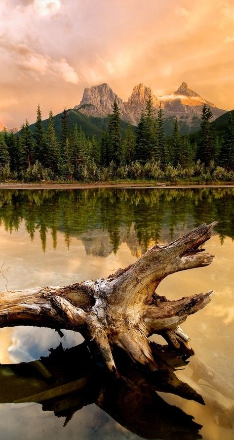 Three Sisters sunset in the Bow Flats Natural Area near Canmore, Alberta, Canada ~ photo: Michael James.