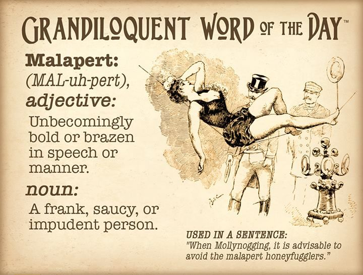 Exceptional Grandiloquent Word Of The Day: Malapert