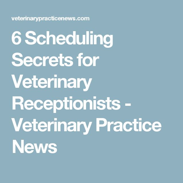 6 Scheduling Secrets for Veterinary Receptionists - Veterinary Practice News