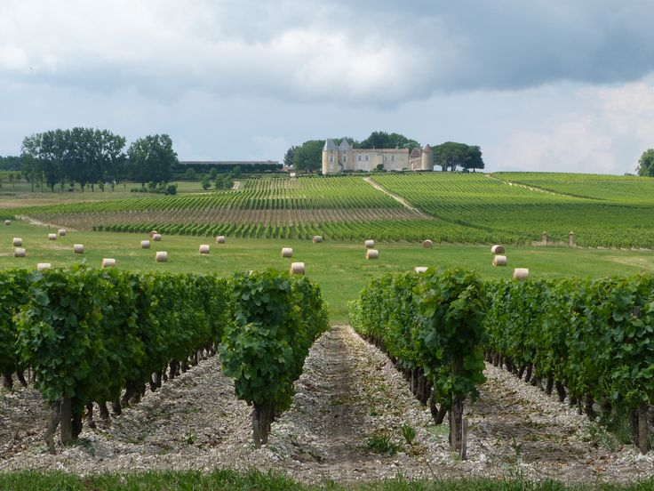 Ch. d'Yquem, Sauternes