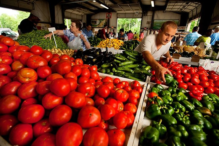 Charlotte Farmers Markets and Pick Your Own Farms