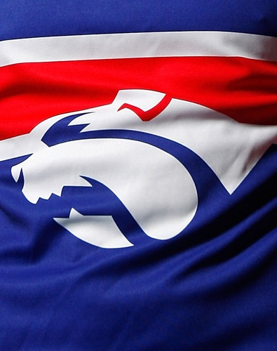 The Western Bulldogs