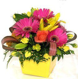 Auckland Flowers - Bright cheerful flower arrangement.  Mixed bright flowers arranged into our reusable yellow tin pot. Delivery Auckland and New Zealand wide from our NZ florist shop