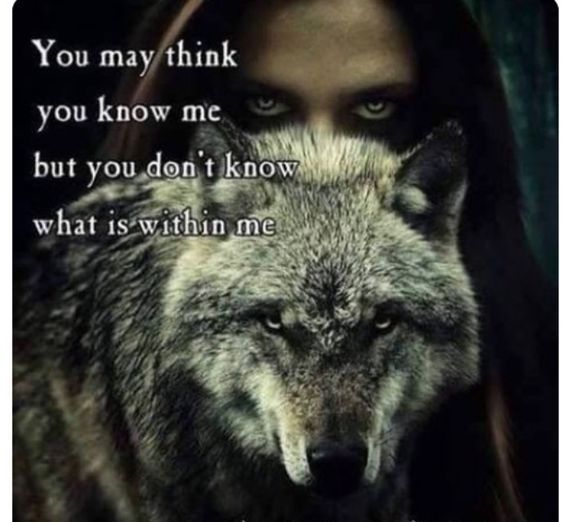THE WOLF .... AMAZING IN EVERY WAY <3<3<3<3