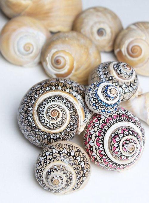 Zobacz zdjęcie Malowanie mazakami muszelki ślimaków. Ozdabiamy rośliny domowe :) w pełnej rozdzielczości