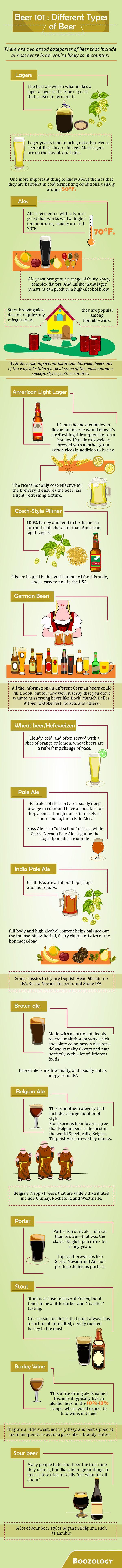 Different Types Of Beer (Beer 101)