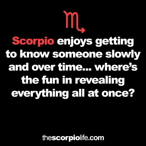 The Scorpio Life