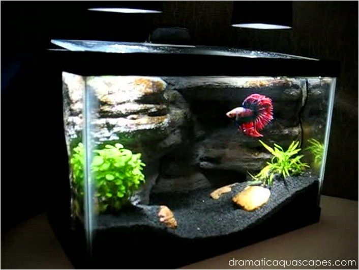 Dramatic aquascapes diy aquarium background betta for Betta fish tank ideas