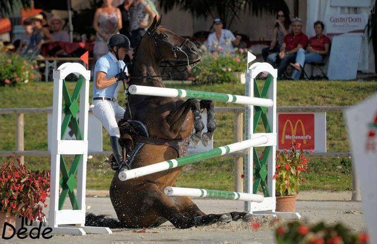 z- Horse Jumping (opps) (Simon Delestre- Macon, 2011) -2b