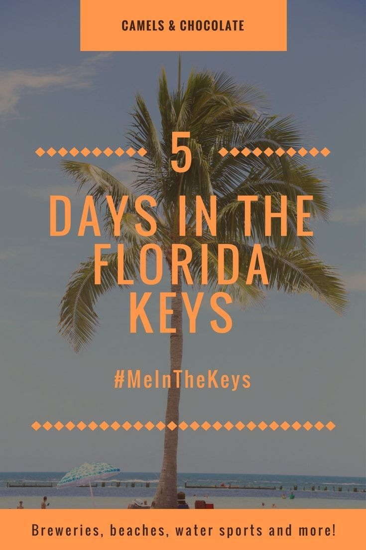 The Florida Keys is the ultimate beach vacation. Hit the water in Key West, see six-toed cats, drink colorful cocktails and soak up those Caribbean vibes. | Camels and Chocolate