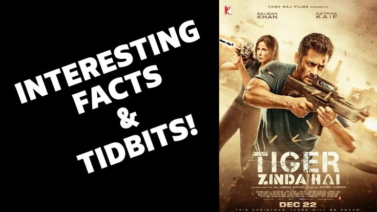 20 Interesting Facts About Tiger Zinda Hai | Salman Khan | Katrina Kaif | Aditya Chopra