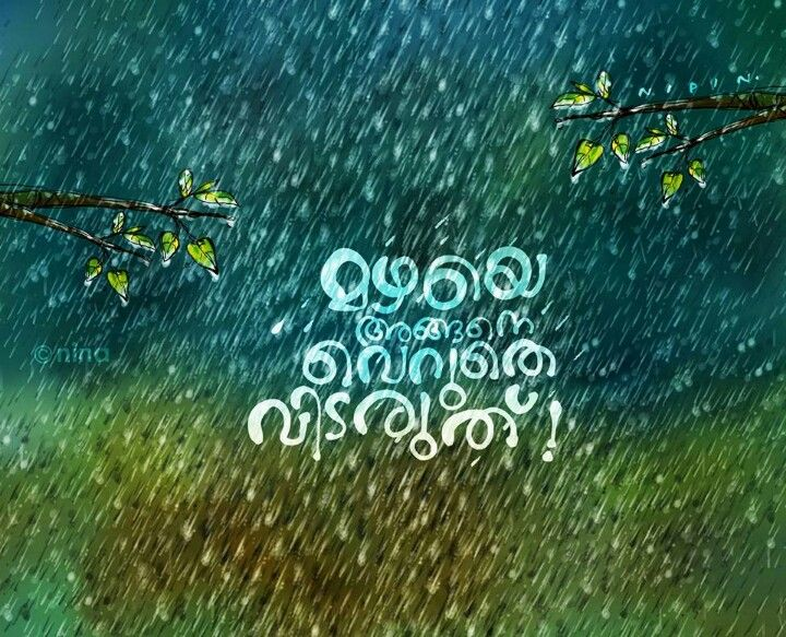 Pin by Anju on മഴ Malayalam quotes, Picture quotes, Rain