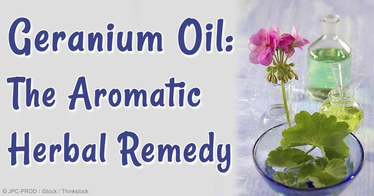 """Derived from the """"poor man's rose,"""" discover how geranium oil benefits your health and its many uses around the home in this article.  http://articles.mercola.com/herbal-oils/geranium-oil.aspx"""
